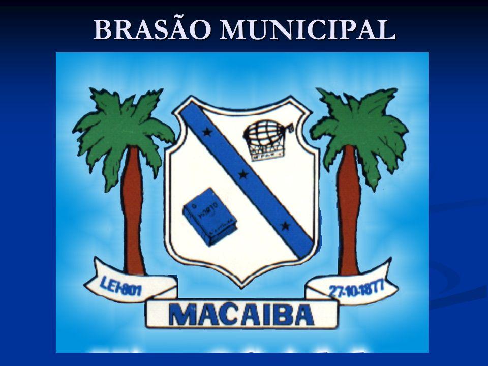 BRASÃO MUNICIPAL