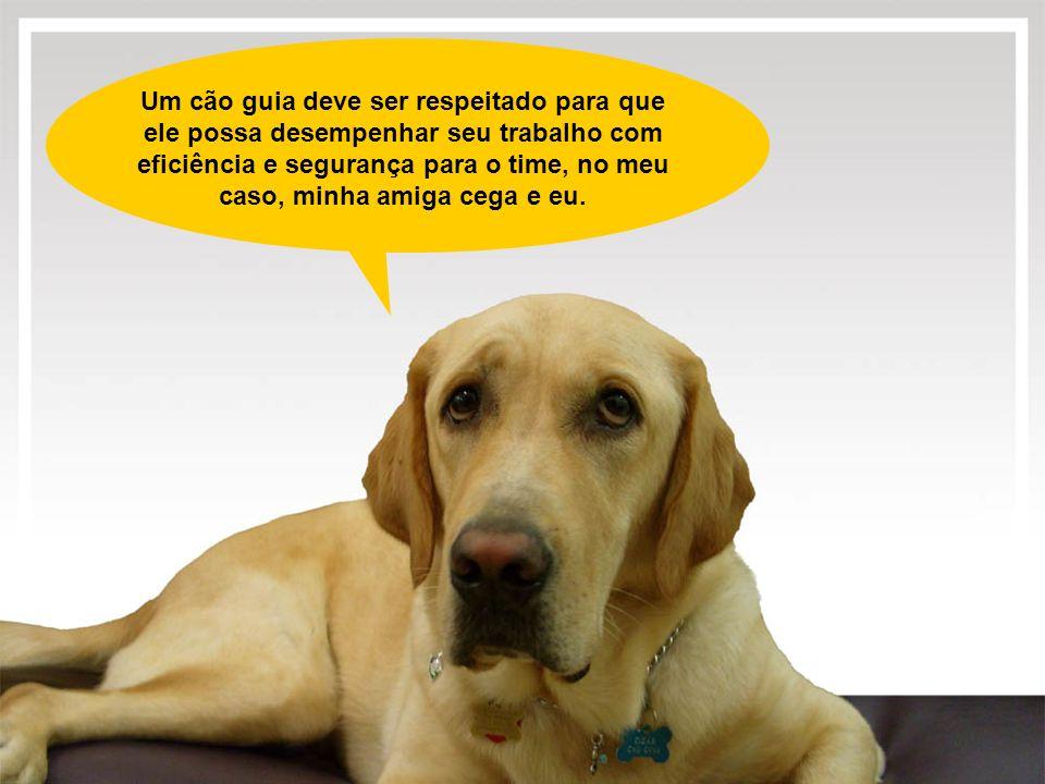 Um cão guia deve ser respeitado para que ele possa desempenhar seu trabalho com eficiência e segurança para o time, no meu caso, minha amiga cega e eu