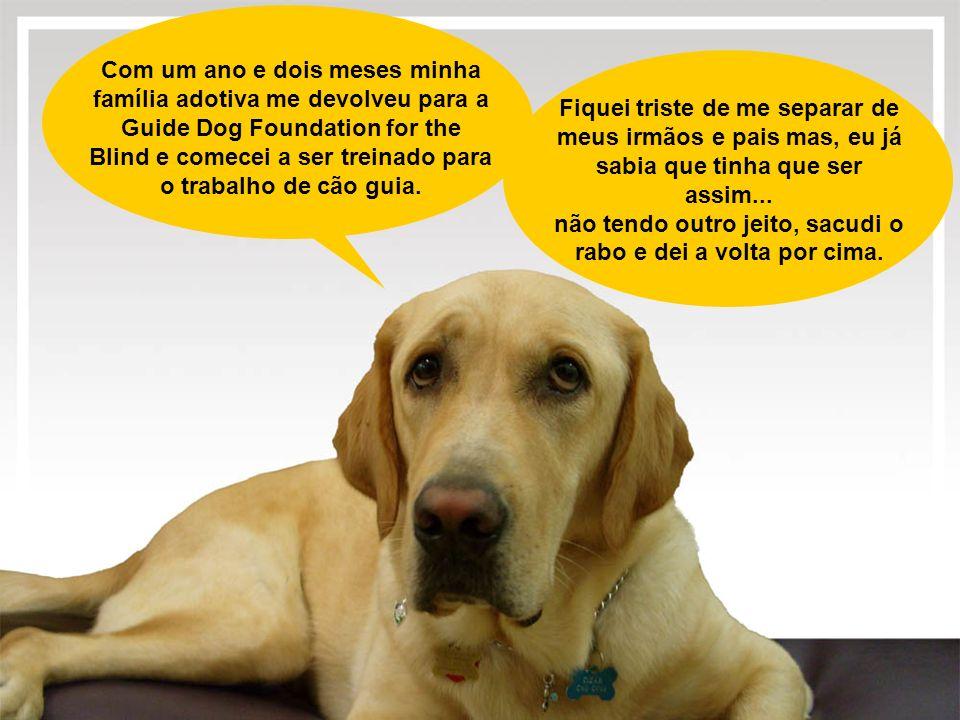 Com um ano e dois meses minha família adotiva me devolveu para a Guide Dog Foundation for the Blind e comecei a ser treinado para o trabalho de cão gu