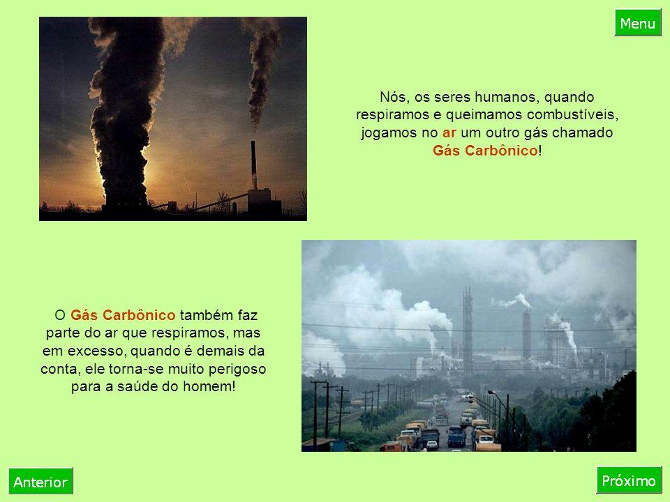Nós, os seres humanos, quando respiramos e queimamos combustíveis, jogamos no ar um outro gás chamado Gás Carbônico.