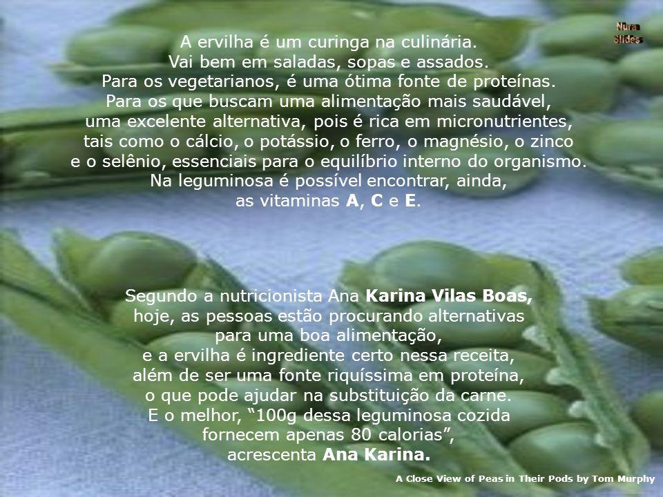 A Close View of Peas in Their Pods by Tom Murphy A ervilha é um curinga na culinária.