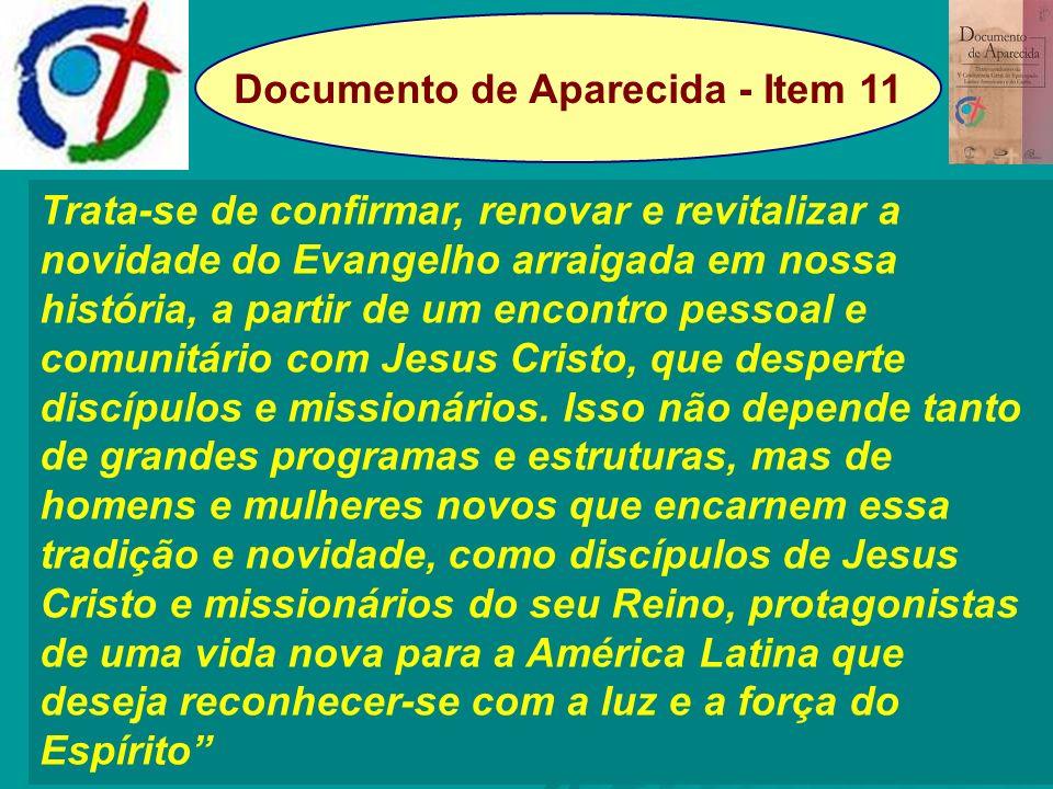 Documento de Aparecida - Item 11 Trata-se de confirmar, renovar e revitalizar a novidade do Evangelho arraigada em nossa história, a partir de um enco