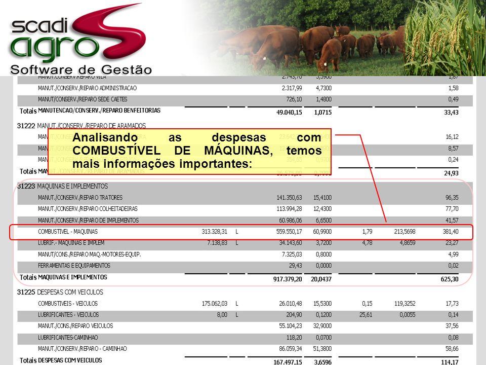 Analisando as despesas com COMBUSTÍVEL DE MÁQUINAS, temos mais informações importantes: