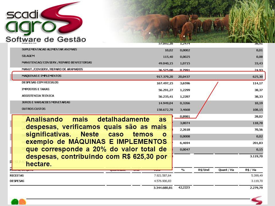 Analisando mais a fundo o grupo MÁQUINAS E IMPLEMENTOS você tem as informações detalhadas de cada tipo de despesa deste grupo.