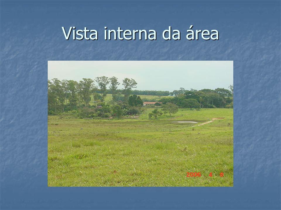 Vista interna da área