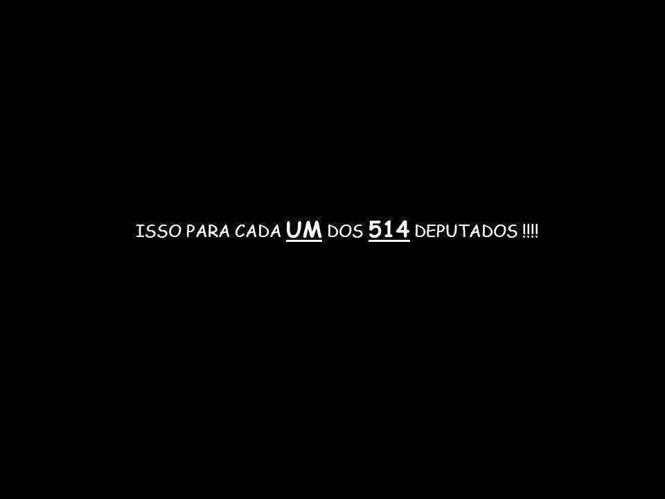 ISSO PARA CADA UM DOS 514 DEPUTADOS !!!!