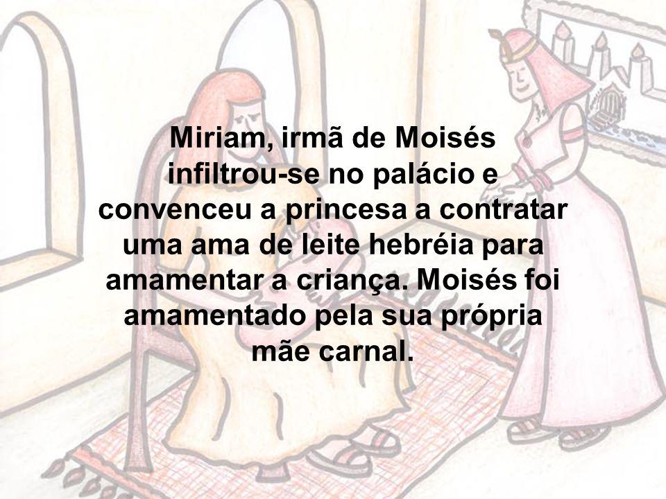 Miriam, irmã de Moisés infiltrou-se no palácio e convenceu a princesa a contratar uma ama de leite hebréia para amamentar a criança.