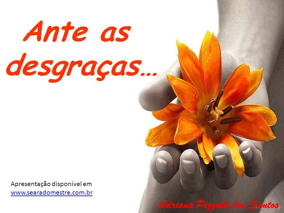 Ante as desgraças… Adriana Pizzutti dos Santos Apresentação disponível em www.searadomestre.com.br www.searadomestre.com.br