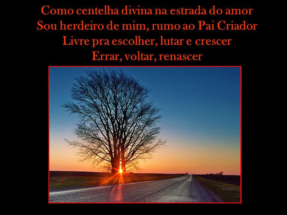 Como centelha divina na estrada do amor Sou herdeiro de mim, rumo ao Pai Criador Livre pra escolher, lutar e crescer Errar, voltar, renascer