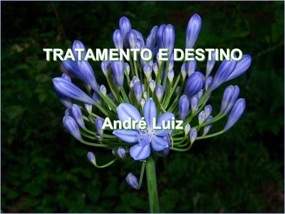 TRATAMENTO E DESTINO André Luiz TRATAMENTO E DESTINO André Luiz