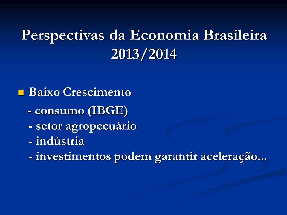Perspectivas da Economia Brasileira 2013/2014 Baixo Crescimento Baixo Crescimento - consumo (IBGE) - setor agropecuário - indústria - investimentos po
