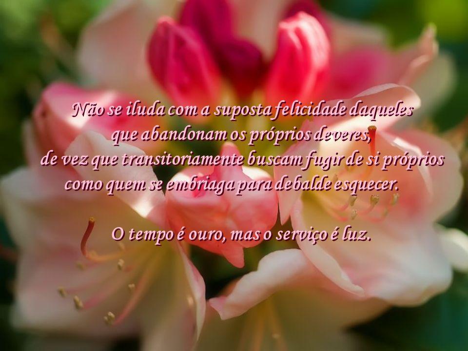 A humildade é um anjo mudo. Tanto menos você necessite, mais terá. Amanhã será, sem dúvida, um belo dia, mas para trabalhar e servir, renovar e aprend