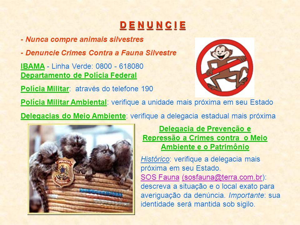 AJUDE ESSES ANIMAIS Não compre animais silvestres! Você estará alimentando uma rede de traficantes e ajudando a depredar a nossa fauna. Não se esqueça