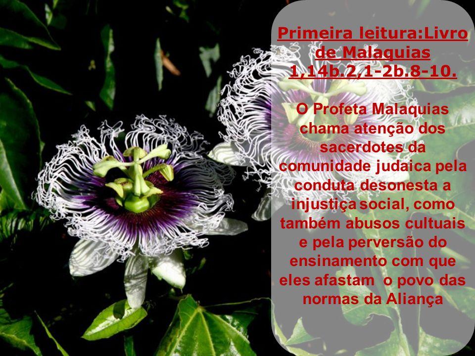 Primeira leitura:Livro de Malaquias 1,14b.2,1-2b.8-10.