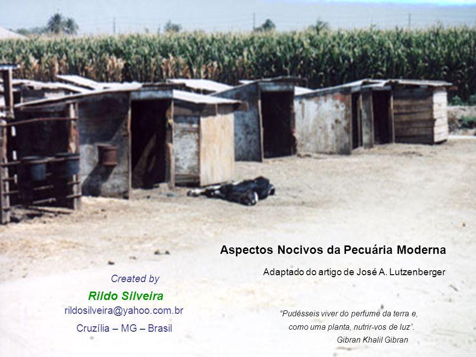 Aspectos Nocivos da Pecuária Moderna Adaptado do artigo de José A.