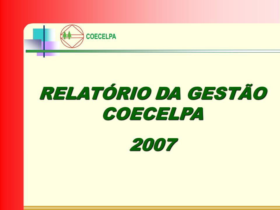RELATÓRIO DA GESTÃO COECELPA 2007
