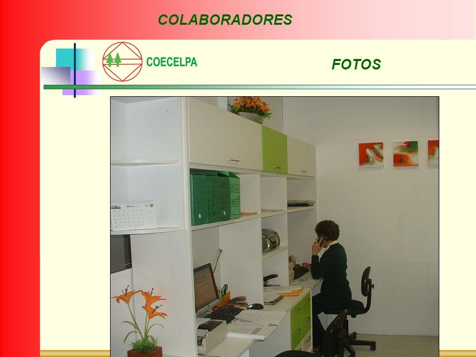 FOTOS COLABORADORES