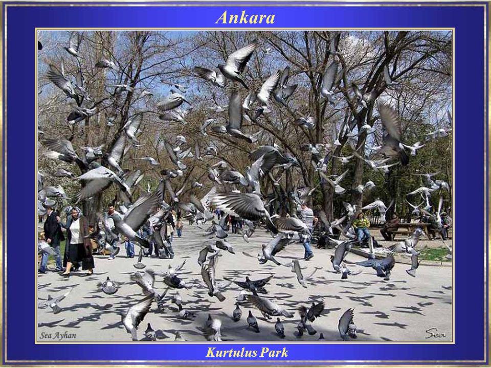 Kurtulus Park Ankara
