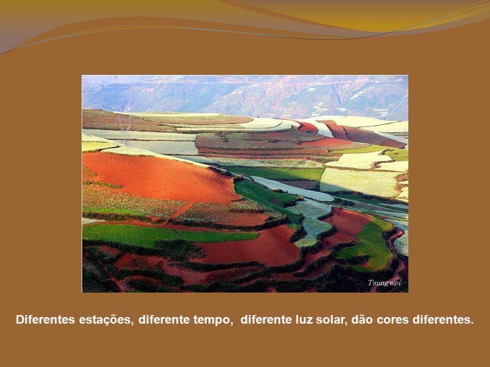 Diferentes estações, diferente tempo, diferente luz solar, dão cores diferentes.