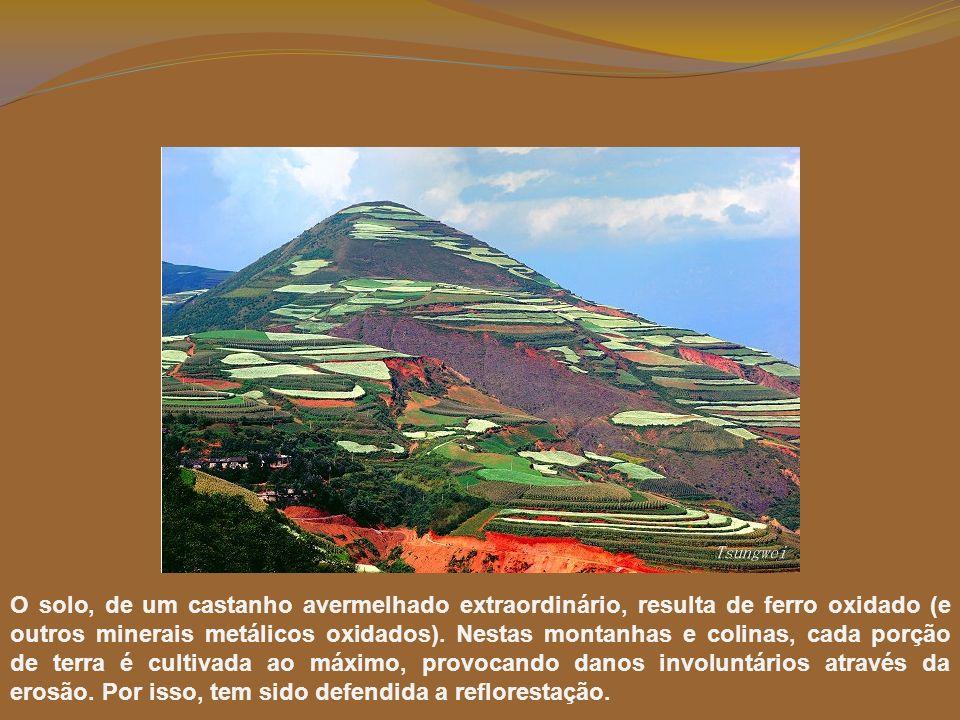 O solo, de um castanho avermelhado extraordinário, resulta de ferro oxidado (e outros minerais metálicos oxidados).