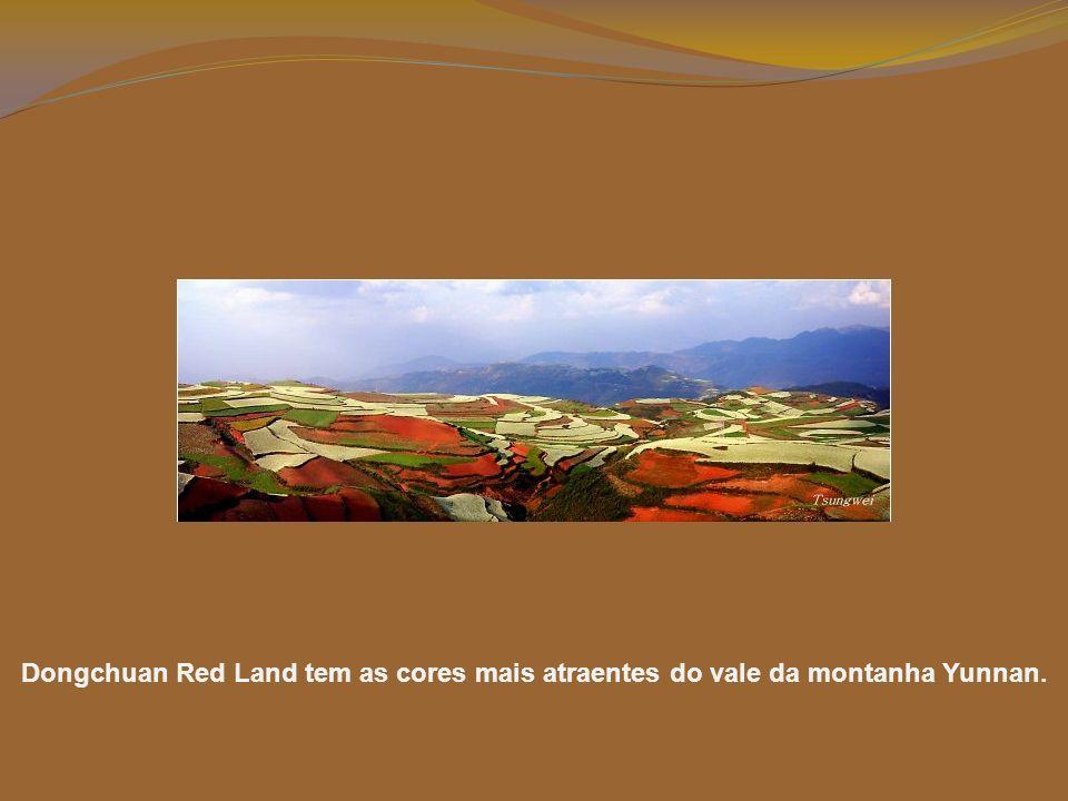 O solo, de um castanho avermelhado extraordinário, resulta de ferro oxidado (e outros minerais metálicos oxidados). Nestas montanhas e colinas, cada p