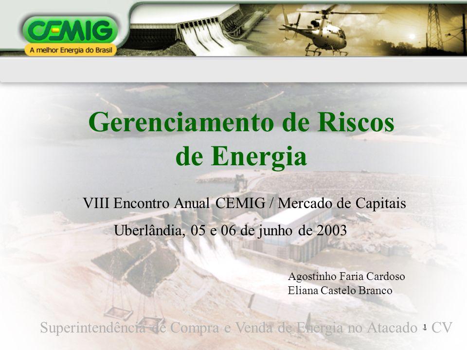 1 Gerenciamento de Riscos de Energia Superintendência de Compra e Venda de Energia no Atacado - CV Uberlândia, 05 e 06 de junho de 2003 VIII Encontro