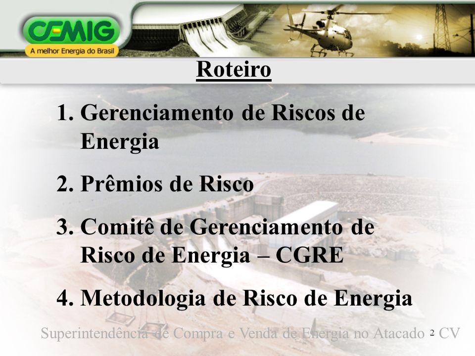 2 Roteiro 1.Gerenciamento de Riscos de Energia 2.Prêmios de Risco 3.Comitê de Gerenciamento de Risco de Energia – CGRE 4.Metodologia de Risco de Energ