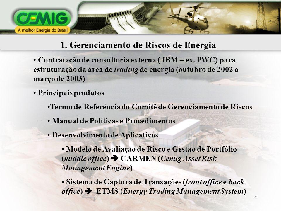 4 1. Gerenciamento de Riscos de Energia Contratação de consultoria externa ( IBM – ex. PWC) para estruturação da área de trading de energia (outubro d