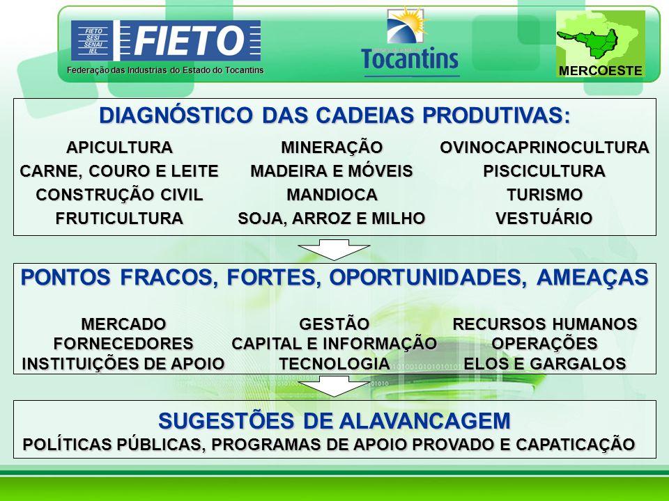 Federação das Industrias do Estado do Tocantins DIAGNÓSTICO DAS CADEIAS PRODUTIVAS: PONTOS FRACOS, FORTES, OPORTUNIDADES, AMEAÇAS SUGESTÕES DE ALAVANC