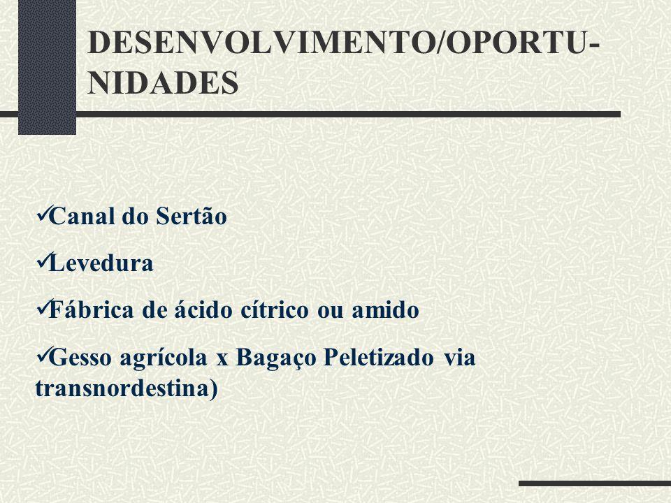 DESENVOLVIMENTO/OPORTU- NIDADES Canal do Sertão Levedura Fábrica de ácido cítrico ou amido Gesso agrícola x Bagaço Peletizado via transnordestina)
