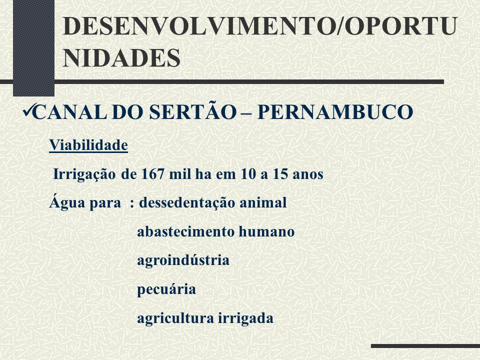 DESENVOLVIMENTO/OPORTU NIDADES CANAL DO SERTÃO – PERNAMBUCO Viabilidade Irrigação de 167 mil ha em 10 a 15 anos Água para : dessedentação animal abast