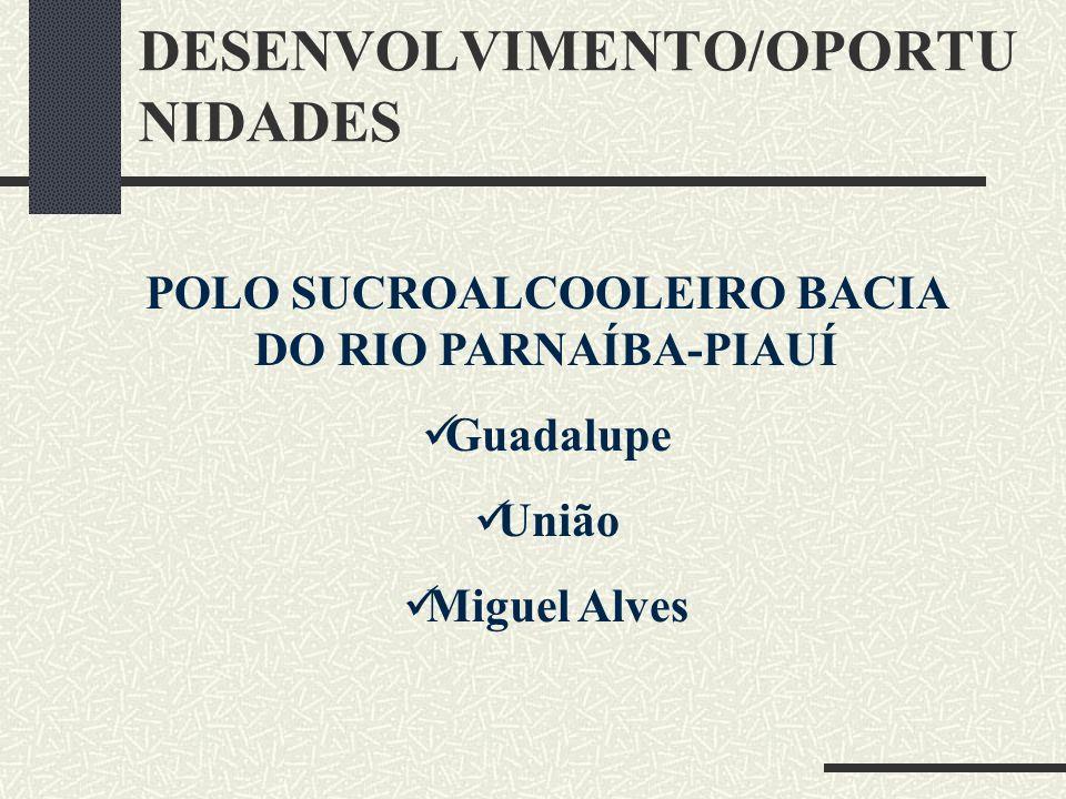 DESENVOLVIMENTO/OPORTU NIDADES POLO SUCROALCOOLEIRO BACIA DO RIO PARNAÍBA-PIAUÍ Guadalupe União Miguel Alves