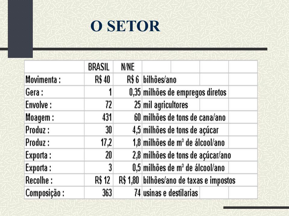 Maior produtor mundial de cana-de-açúcar(431 milhões/t) e açúcar(30 milhões/t/ano) 2º maior produtor mundial de etanol(17,2 milhões de m³/ano) Maior exportador mundial de açúcar(20 milhões/t/ano) e etanol( 3 milhões de m³/ano) 2º maior consumidor mundial de etanol(14 milhões de m³/ano) 4º maior consumidor mundial de açúcar(10 milhões/t/ano)