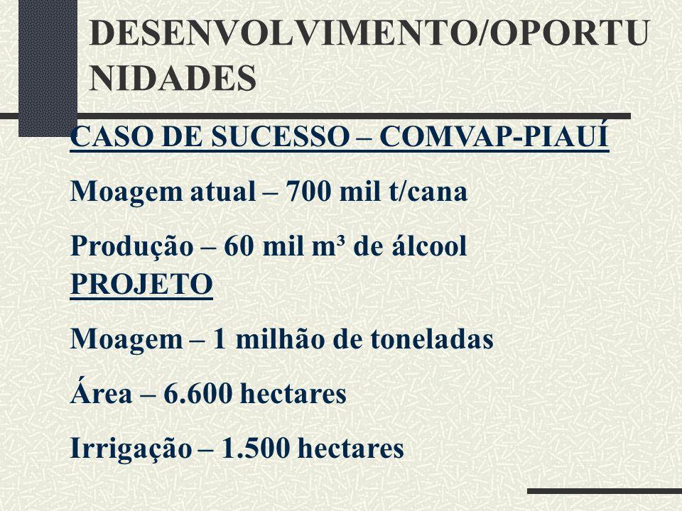 DESENVOLVIMENTO/OPORTU NIDADES CASO DE SUCESSO – COMVAP-PIAUÍ Moagem atual – 700 mil t/cana Produção – 60 mil m³ de álcool PROJETO Moagem – 1 milhão d