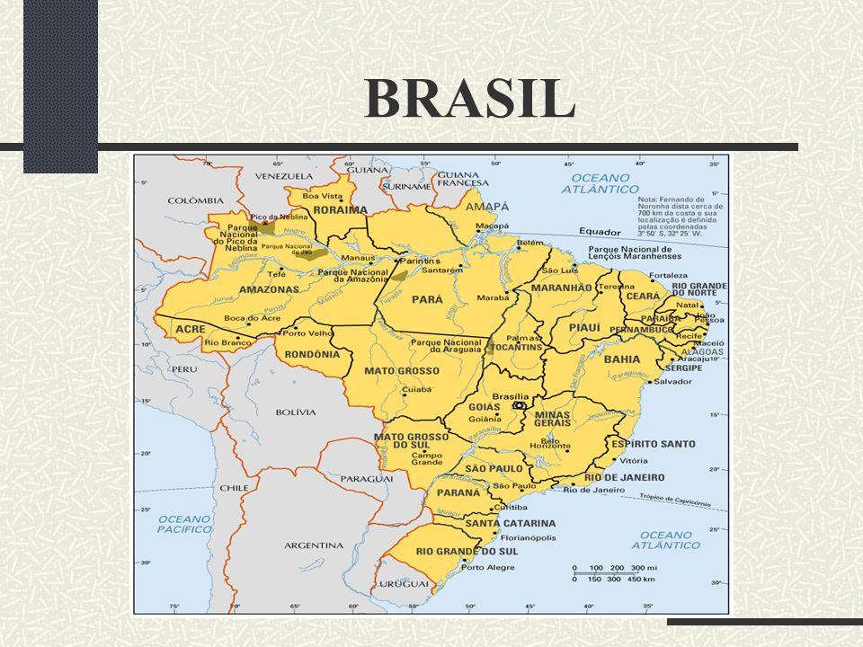 BRASIL Desen volvid o por Guia Intern et Brazil ©1 999 Info: guianet@gui anet.com.br guianet@gui anet.com.br