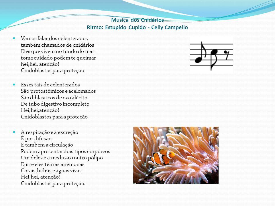 Musica dos Cnidários Ritmo: Estupido Cupido - Celly Campello Vamos falar dos celenterados também chamados de cnidários Eles que vivem no fundo do mar tome cuidado podem te queimar hei,hei, atenção.