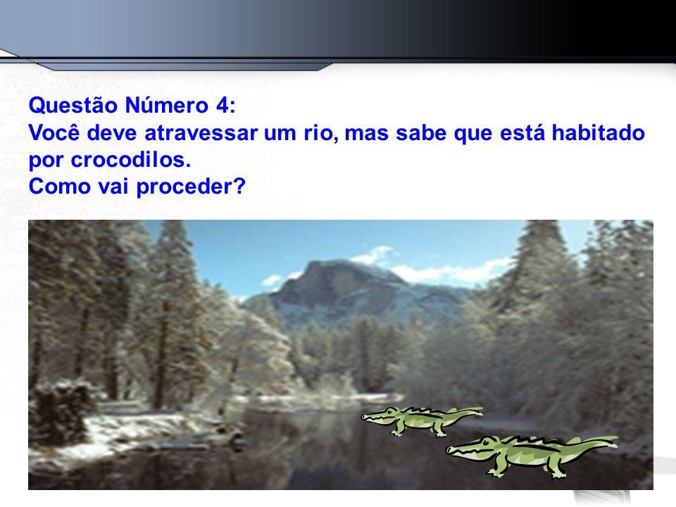 Questão Número 4: Você deve atravessar um rio, mas sabe que está habitado por crocodilos. Como vai proceder?