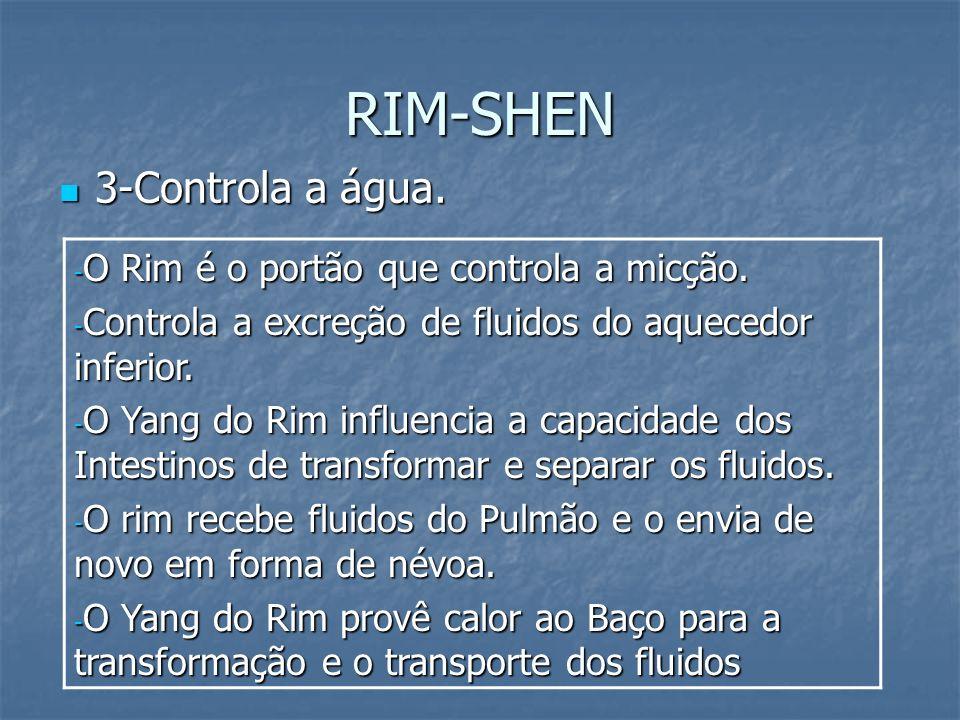 RIM-SHEN 3-Controla a água. 3-Controla a água. - O Rim é o portão que controla a micção. - Controla a excreção de fluidos do aquecedor inferior. - O Y