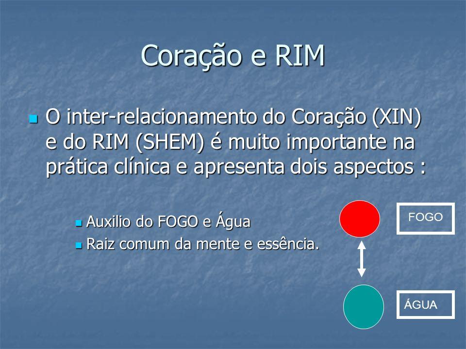 Coração e RIM O inter-relacionamento do Coração (XIN) e do RIM (SHEM) é muito importante na prática clínica e apresenta dois aspectos : O inter-relaci