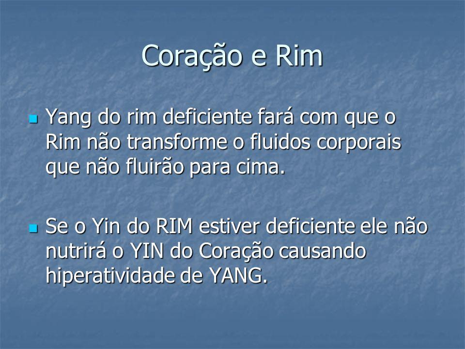 Coração e Rim Yang do rim deficiente fará com que o Rim não transforme o fluidos corporais que não fluirão para cima. Yang do rim deficiente fará com