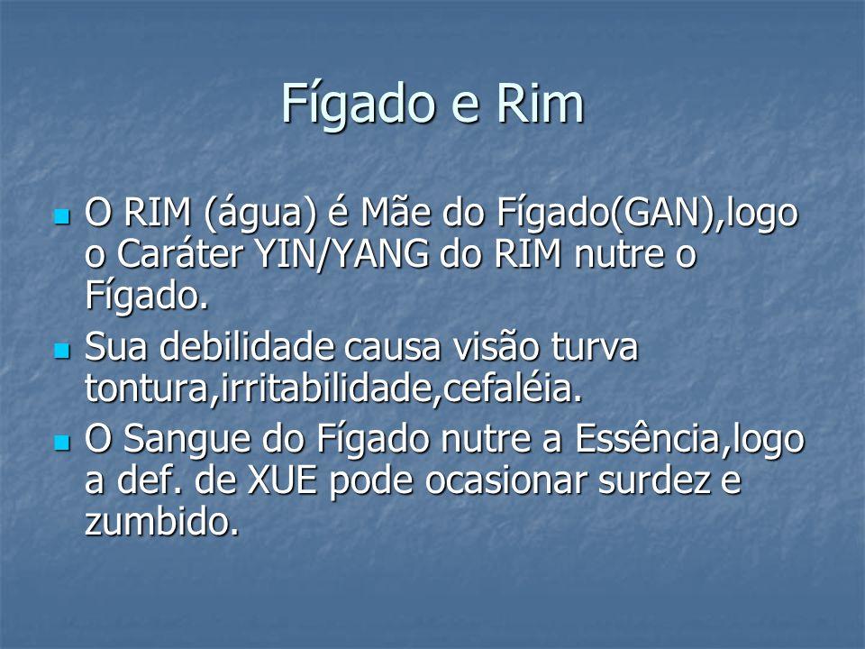 Fígado e Rim O RIM (água) é Mãe do Fígado(GAN),logo o Caráter YIN/YANG do RIM nutre o Fígado. O RIM (água) é Mãe do Fígado(GAN),logo o Caráter YIN/YAN