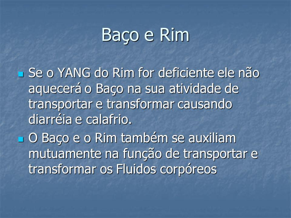 Baço e Rim Se o YANG do Rim for deficiente ele não aquecerá o Baço na sua atividade de transportar e transformar causando diarréia e calafrio. Se o YA