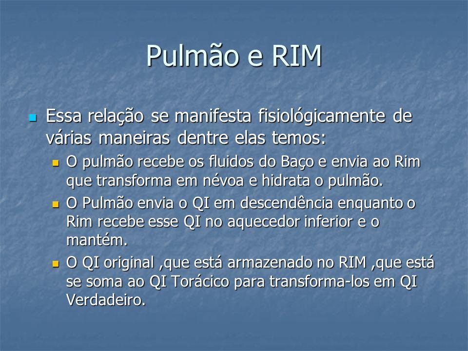 Pulmão e RIM Essa relação se manifesta fisiológicamente de várias maneiras dentre elas temos: Essa relação se manifesta fisiológicamente de várias man