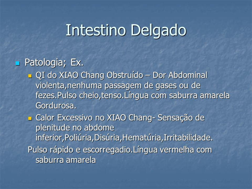 Intestino Delgado Patologia; Ex. Patologia; Ex. QI do XIAO Chang Obstruído – Dor Abdominal violenta,nenhuma passagem de gases ou de fezes.Pulso cheio,