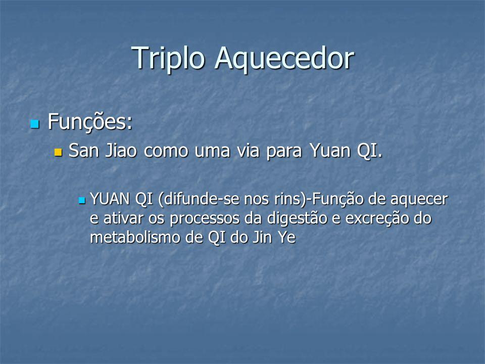 Triplo Aquecedor Funções: Funções: San Jiao como uma via para Yuan QI. San Jiao como uma via para Yuan QI. YUAN QI (difunde-se nos rins)-Função de aqu