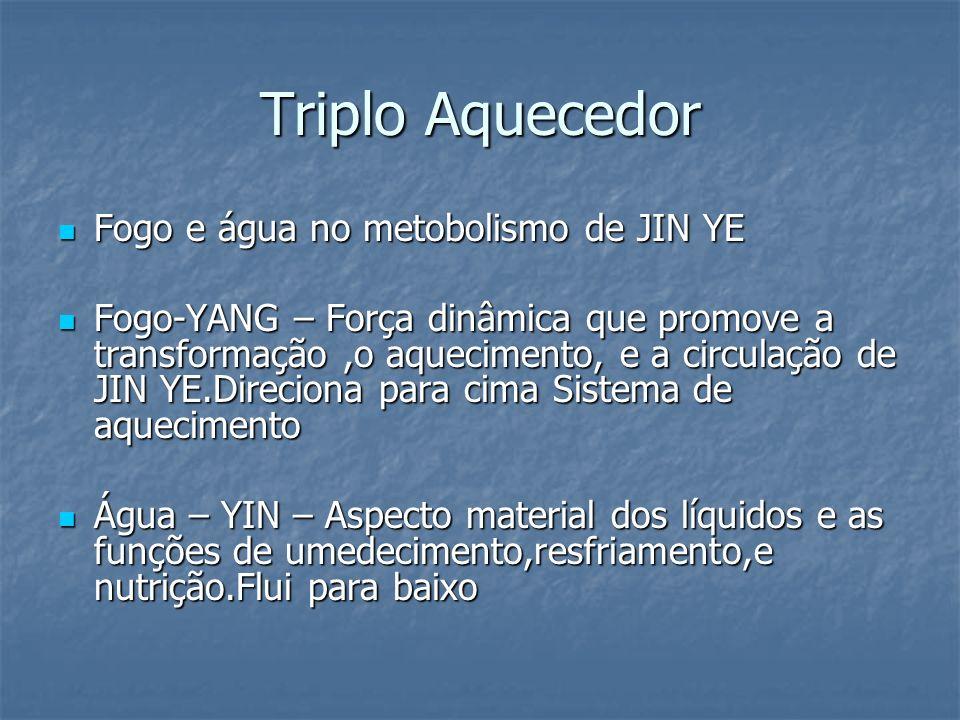 Triplo Aquecedor Fogo e água no metobolismo de JIN YE Fogo e água no metobolismo de JIN YE Fogo-YANG – Força dinâmica que promove a transformação,o aq