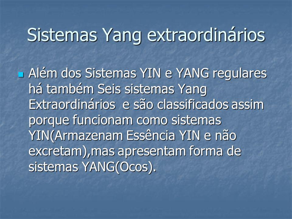 Sistemas Yang extraordinários Além dos Sistemas YIN e YANG regulares há também Seis sistemas Yang Extraordinários e são classificados assim porque fun