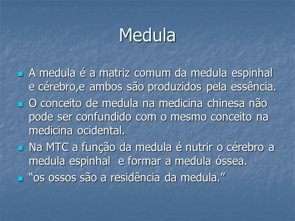 Medula A medula é a matriz comum da medula espinhal e cérebro,e ambos são produzidos pela essência. A medula é a matriz comum da medula espinhal e cér