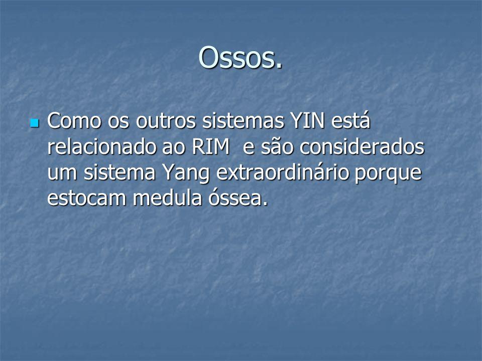 Ossos. Como os outros sistemas YIN está relacionado ao RIM e são considerados um sistema Yang extraordinário porque estocam medula óssea. Como os outr