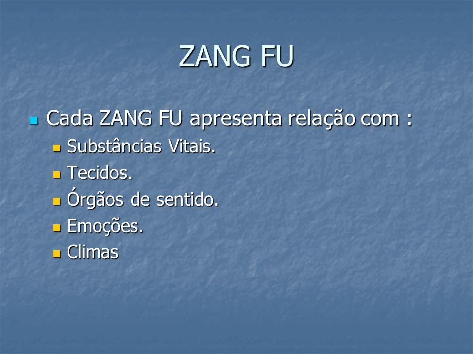 ZANG FU Cada ZANG FU apresenta relação com : Cada ZANG FU apresenta relação com : Substâncias Vitais. Substâncias Vitais. Tecidos. Tecidos. Órgãos de
